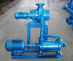 上海J2J2S罗茨水环机组